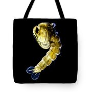 Asian Tiger Mosquito Pupa Tote Bag