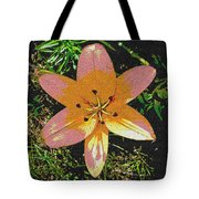 Asiatic Lily With Sandstone Texture Tote Bag