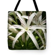 Asiatic Poison Lily Tote Bag