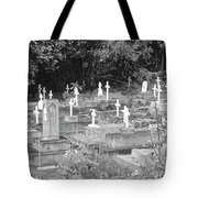 Asleep In Paradise Tote Bag