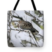 Asleep In The Snow - Mourning Dove Portrait Tote Bag