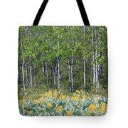 Aspen And Balsam Root Tote Bag
