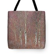 Aspen And Buckbrush Tote Bag