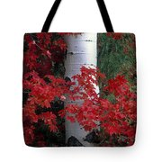 Aspen And Mountain Maple Tote Bag