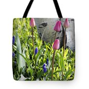 Aspen And Tulips Tote Bag