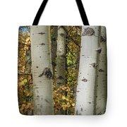 Aspen Bark Tote Bag