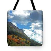 Aspen Brushes Tote Bag