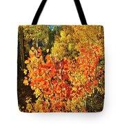 Aspen Colors In Dillon Colorado Tote Bag