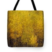 Aspen Fall 2 Tote Bag