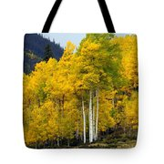 Aspen Fall 3 Tote Bag