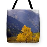 Aspen Fall 4 Tote Bag