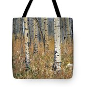Aspen Forest, Mountain View County Tote Bag