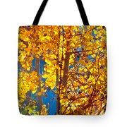Aspen Glow Autumn Sky Tote Bag