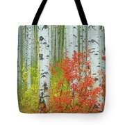 Aspen Glow Tote Bag