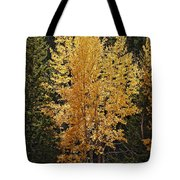 Aspen Gold Tote Bag by Kelley King