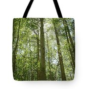 Aspen Green Tote Bag by Eric Glaser