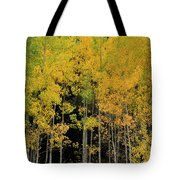 Aspen Haven  Tote Bag by Ron Cline