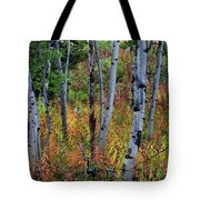 Aspen In Fall Tote Bag