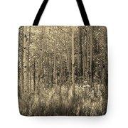 Aspen Light Tote Bag
