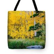 Aspen Pond Tote Bag