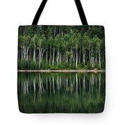 Aspen Reflections Tote Bag