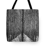Aspen Rows Tote Bag