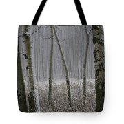 Aspen Stand In A Snowstorm Tote Bag