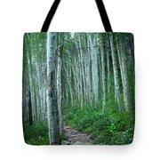 Aspen Trails  Tote Bag