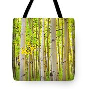 Aspen Tree Forest Autumn Time Portrait Tote Bag