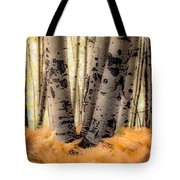 Aspen Trees With Ferns Tote Bag