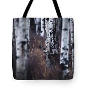 Aspen View 2 Tote Bag