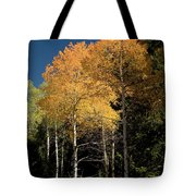 Aspens And Sky Tote Bag