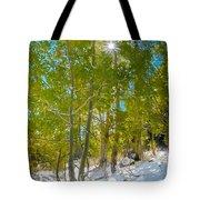 Aspens At Pine Creek Basin Tote Bag