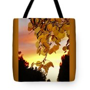Aspens At Sunset Tote Bag