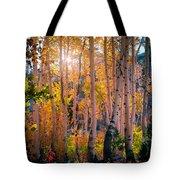 Aspens In Fall Color Tote Bag