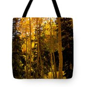 Aspens In Fall Tote Bag