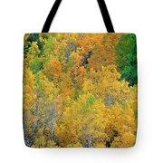 Aspens In Fall Eastern Sierras California Tote Bag