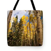 Aspens In Santa Fe 3 Tote Bag