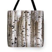 Aspens In Winter Panorama - Colorado Tote Bag
