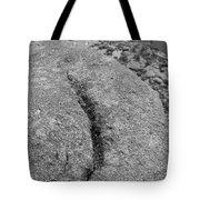 Ass Crack New Mexico In Black And White Tote Bag