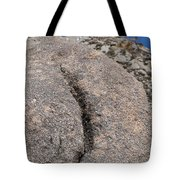 Ass Rock New Mexico Tote Bag
