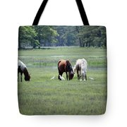 Assateague Island - Wild Ponies And Their Buddies  Tote Bag
