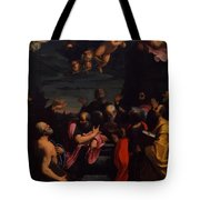 Assumption 1600 Tote Bag
