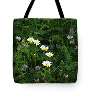 Aster And Daisies Tote Bag
