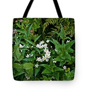 Asters And Fringed Grass-of-parnassus And Red Monkeyflowers On Highline Trail In Glacier National Pa Tote Bag