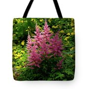 Astillbe In Light And Shadow Tote Bag