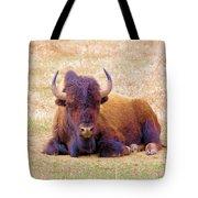 A Buffalo Staring Tote Bag