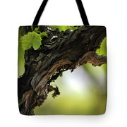 At Lachish Vineyard Tote Bag