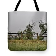 At Peters Canyon In The Rain 1 Tote Bag
