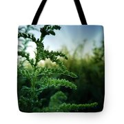 At The Break Of Day Tote Bag